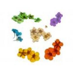 Flori uscate mici